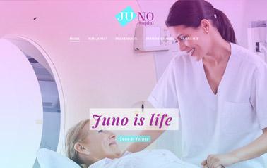 business-website-templates-business-wordpress-theme-juno