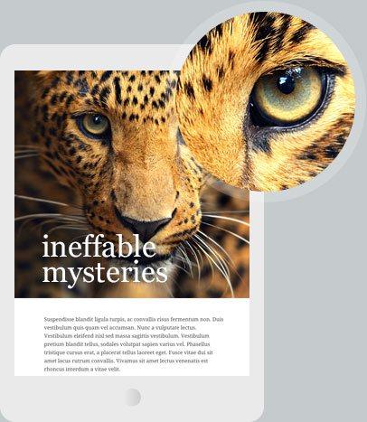 jupiter-wordpress-theme-business-website-templates-business-wordpress-theme-tablet